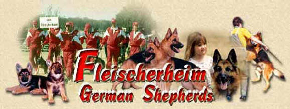 Fleischerheim German Shepherd Purebred Puppies For Sale - Pedigree Page